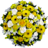 Posy in Yellow and White
