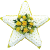Star Tribute in Yellow